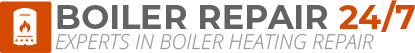 Teignmouth Boiler Repair Logo